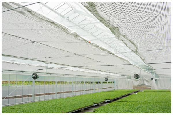温室内カーテン
